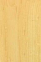 Oberfläche für Styletür 3 Ahorn CPL mit Lisenen