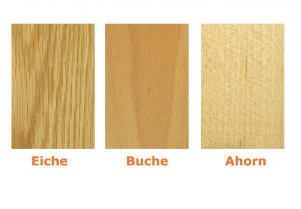 Echtholz Holzrahmentür Style 2